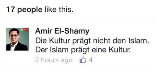 elshamy2